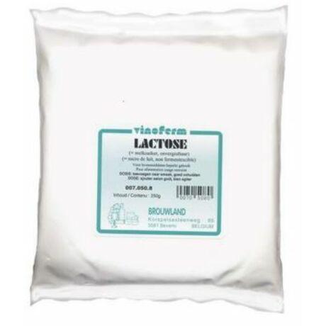 Laktóz / Tejcukor 1kg